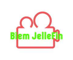 Biem JelleFin